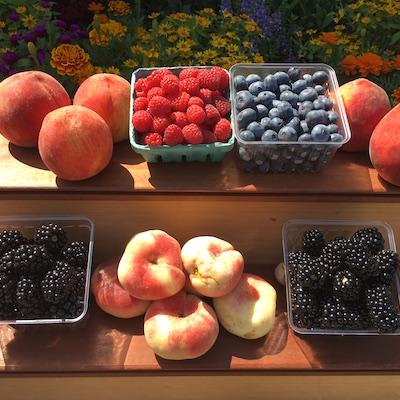 Early Summer Fruit CSA Weekly Box