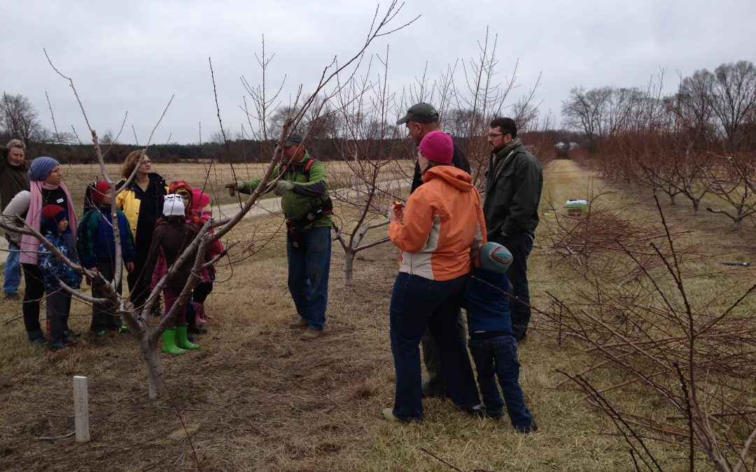 March Pruning Workshop!