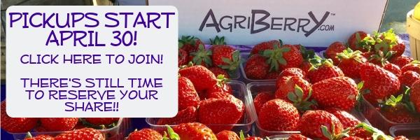 2019 Fruit Farm Shares now available