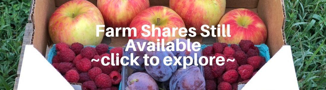 Local Fruit Farm Share
