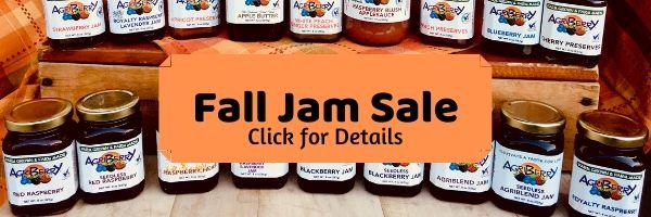 Annual Jam Sale!