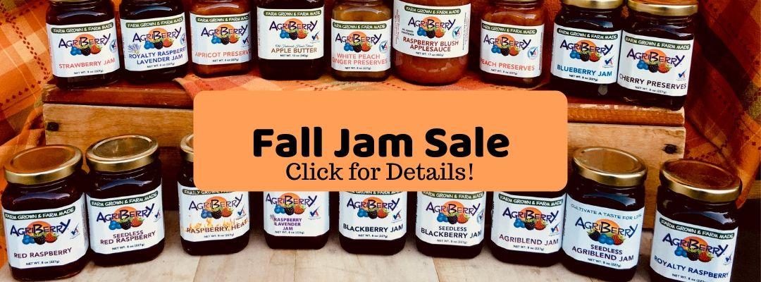 Annual Jam Sale